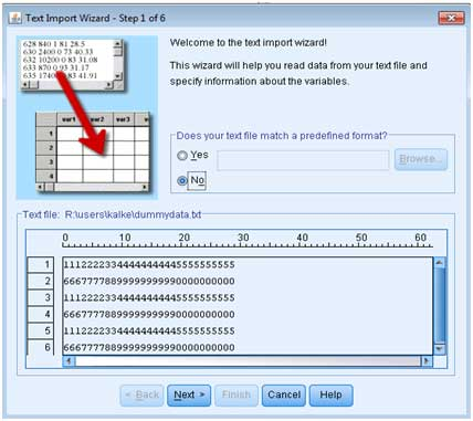 Working in the SRE - Loading data using the SPSS Import Wizard